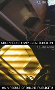 Greenhouse lamps being switched on